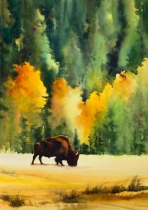 "Black Hills Bison, 30""x22"", for sale in Gallery Section of website."